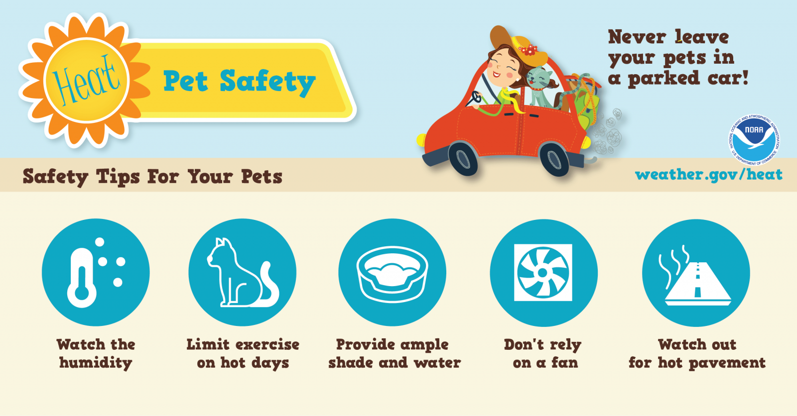 Pet Safety in Heat - never leave your pets in a parked car! Watch the humidity, limit exercise on hot days, provide ample shade and water, don't rely on a fan, watch out for hot pavement.