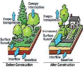 Diagram showing runoff patterns due to increased impervious surfaces